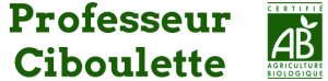 Logo Professeur Ciboulette